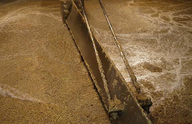 Blick in die Mash Tun bei Glen Moray. (Foto: Malt Whisky)