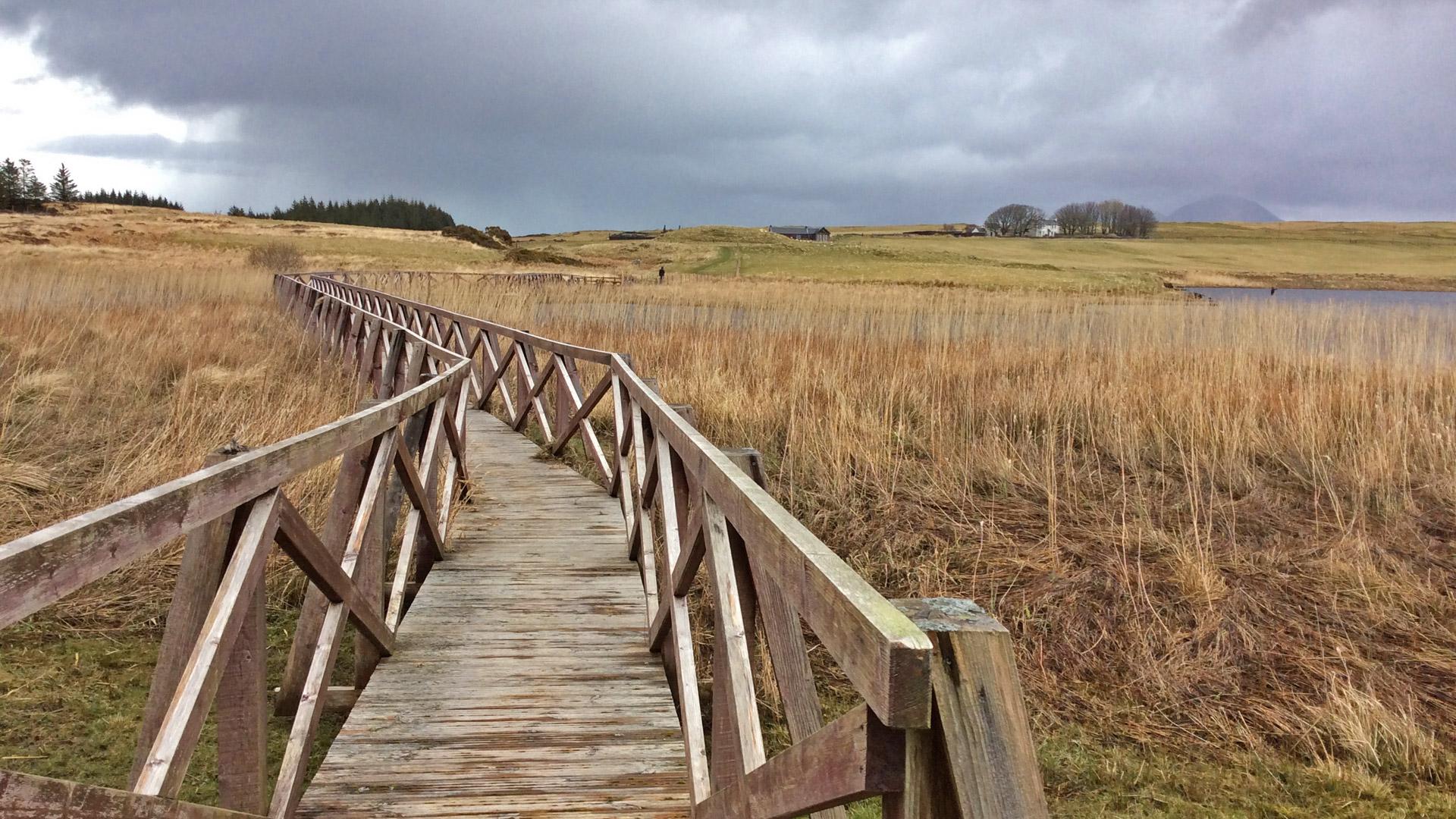 Holzstege auf Islay führen einen trockenen Fußes durch feuchte Wiesen. (Foto: Malt Whisky)