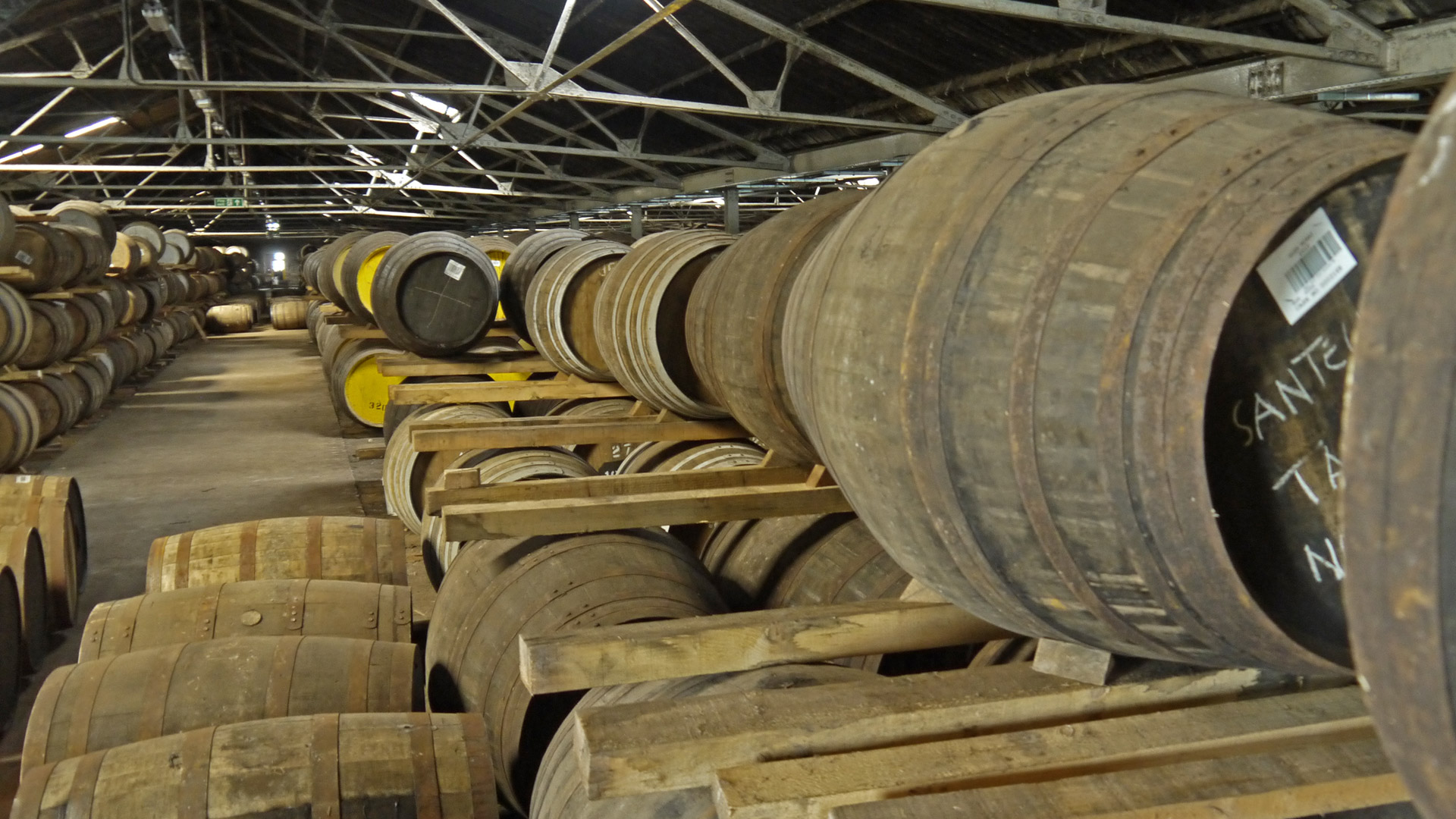 Unendliche Weiten: Eine lange Reihe Sherryfässer bei Glen Moray. (Foto: Malt Whisky)