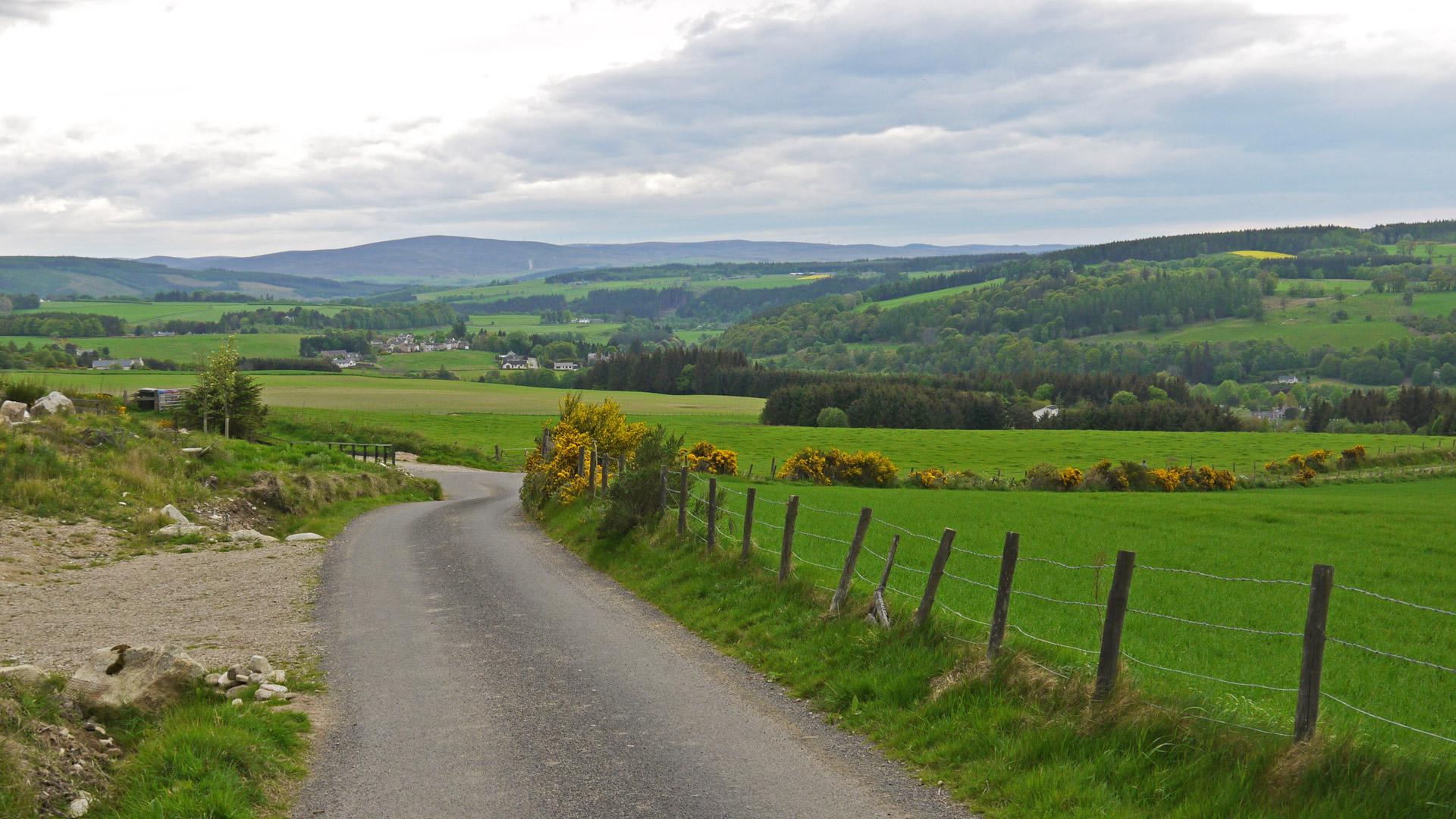 Grüne saftige Wiesen und sanfte Hügel: Das ist die Landschaft der wunderschönen Speyside. (Foto: Malt Whisky)