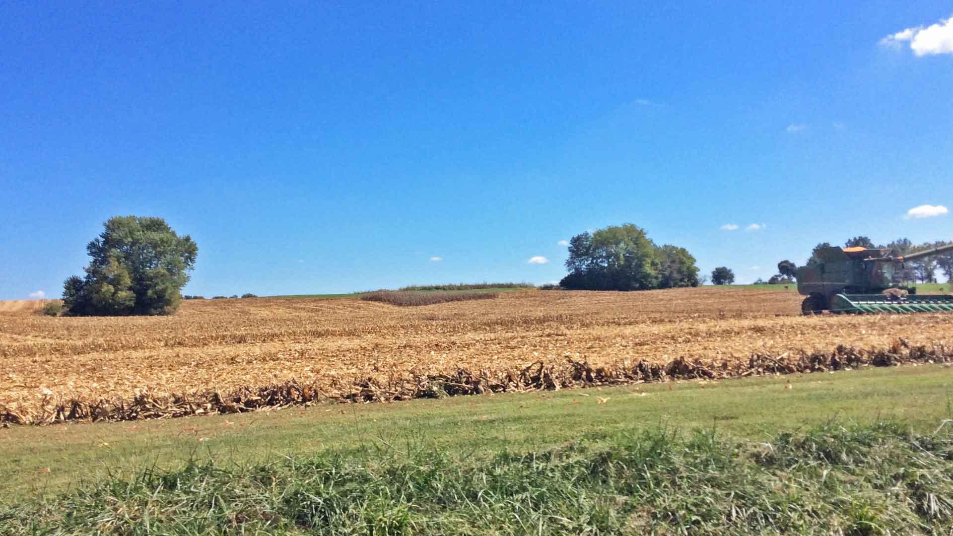 Endlose Landschaften in den USA. Hier ist auch viel Platz für Landwirtschaft und den Anbau von Getreide für die Bourbon-Herstellung. (Foto: Malt Whisky)