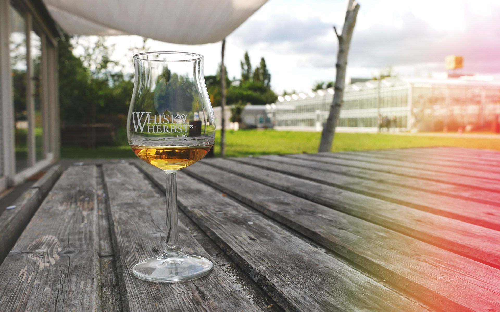 Tasting des GlenDronach 18 Jahre beim Whiskyherbst 2017 in Berlin (Foto: Malt Whisky)
