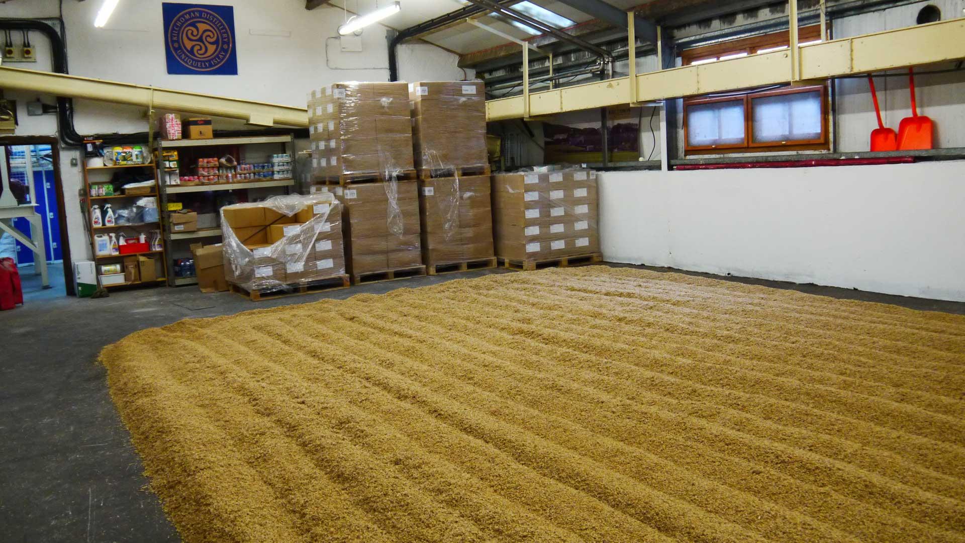 Chez Kilchoman, le maltage se déroule dans un petit espace: la petite distillerie peut donc couvrir elle-même environ 20% de ses besoins (Photo: Malt Whisky)