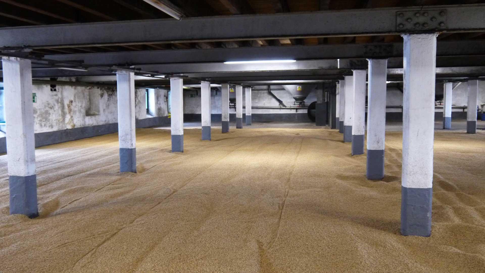 Le charme d'un entrepôt: les sols en malt - ici à Laphroaig - sont pour la plupart plutôt fonctionnels (Photo: Malt Whisky)